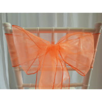 Nœud de chaise Organza - Corail fluo