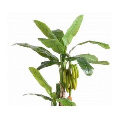 Bananier artificiel H180cm