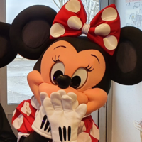 "Location Mascotte ""Mickey"" (personnage Disney) (Copie)"